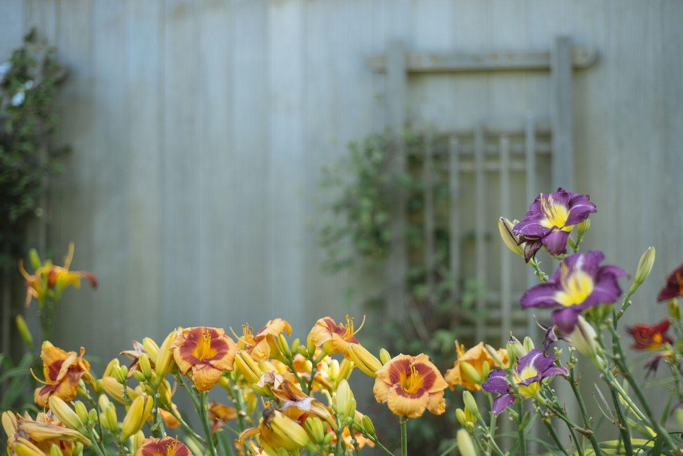 giardino perfetto