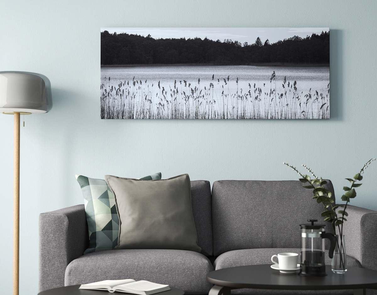 quadro-stampa-su-tela-ikea-lago-in-bianco-e-nero-vegetazione-bosco